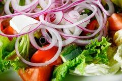 Apetyczna świeżego warzywa sałatka z korzennym kumberlandem w białe śliwki zdjęcie stock