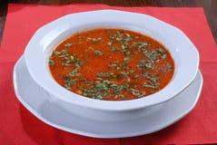 apetyczny barszczy talerza rosjanin smakowity Obraz Stock