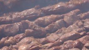 Apetyczny soczysty wieprzowina grilla kucharstwo na metali skewers na outdoors węgla drzewnego grillu z ogienia dymem zbiory