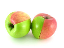 Apfel   Lizenzfreie Stockfotografie