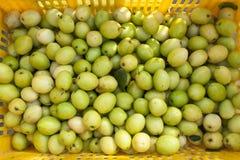 Apfel des grünen Fallhammers Lizenzfreies Stockfoto