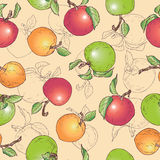 Apfel-Musterfrucht des Handabgehobenen betrages Stockfotos