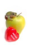 Apfel und Frosch des Lehrers Lizenzfreie Stockfotos