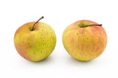 Apfel zwei auf lokalisiertem weißem Hintergrund Lizenzfreies Stockfoto