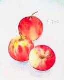 Apfelaquarell gemalt Lizenzfreies Stockfoto