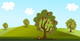 Apfelbäume Stockbild
