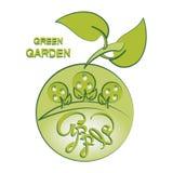 Apfelbäume und Apfel Grüner Garten vektor abbildung