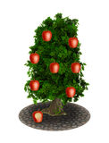 Apfelbaum-Äpfel gebissen stock abbildung