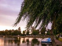 Apfelbaum, Sonne, Blumen, Wolken, Wiese? Stockfoto