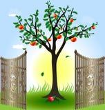 Apfelbaum und Gatter Stockfotografie