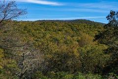 Apfelgarten-Berg und FFA-Radarstation stockfotografie