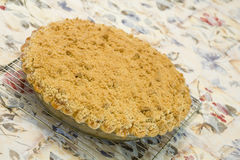Apfelkuchen auf Tischdecke Lizenzfreies Stockfoto