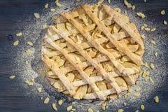 Apfelkuchen mit Mandeln und Puderzucker Stockfotografie
