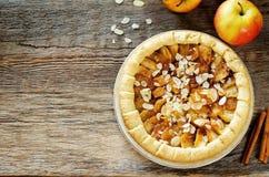 Apfelkuchen mit Zimt Lizenzfreie Stockfotos
