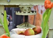 Apfelmus, das unter Verwendung eines Stahlsiebs gemacht wird stockfotografie
