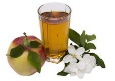 Apfelsaftstillleben Stockfotografie