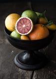 Apfelstrudel o strudel alle mele su una rastrelliera Fotografia Stock Libera da Diritti