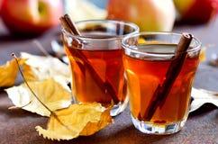 Apfelwein Lizenzfreies Stockbild