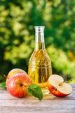 Apfelwein oder Essig stockbild