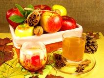 Apfelweinstillleben Stockbild