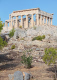 Aphaia寺庙在Aegina的 图库摄影