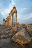 Aphamia, Syria Royalty Free Stock Images