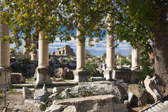 Aphrodisias Royalty Free Stock Images