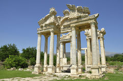 Free Aphrodisias Royalty Free Stock Images - 22519839