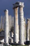 Aphrodisias Ancient City Columns Royalty Free Stock Photos