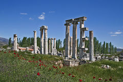 Aphrodisias ancient city Royalty Free Stock Images