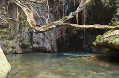 Aphrodite's Baths. A lake, rocks, waterfall and a tree in Aphrodite's bath Royalty Free Stock Photo