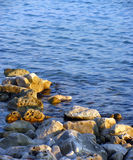 aphroditefödelseorten cyprus nära tou för romiou för paphospetra-rocks vågr Arkivbilder