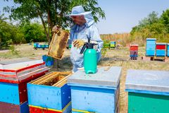Apiarist, beekeeper жмет мед, год сбора винограда Стоковое фото RF