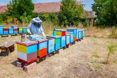Apiarist, beekeeper жмет мед, год сбора винограда Стоковая Фотография RF