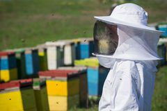 Apiarist watching over his bee hives. Horizontal close up of a beekeeper in white protection suit watching over his bee hives on a green field Royalty Free Stock Image