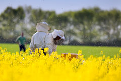 Apiarists in rapeseed field Stock Photos