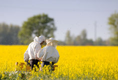 Apiarists in rapeseed field Royalty Free Stock Image