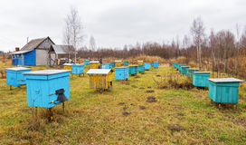 Free Apiary Stock Images - 46899554