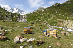Apiary in the Alps in Switzerland Royalty Free Stock Photography