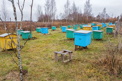 Apiary. At autumn in Belarus stock images