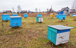 Apiary. At autumn in Belarus stock photography