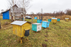 Apiary. Stock Photo