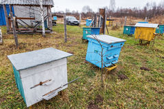Apiary. Stock Photography