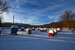 Apiary. In Bieszczady mountains, Polish part of Carpathians Stock Photography