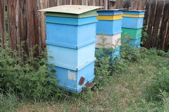 Apiary with colorful beehives. In the field Royalty Free Stock Image