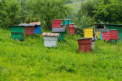Apiary with colorful houses Royalty Free Stock Photo