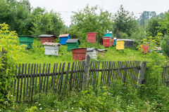 Apiary with colorful houses Royalty Free Stock Photos