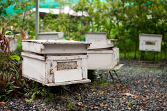 Apiary Stock Images