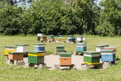 Apiary Stock Photos