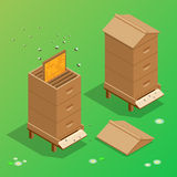 Apiary honey bee house apiary vector illustrations. Stock Images